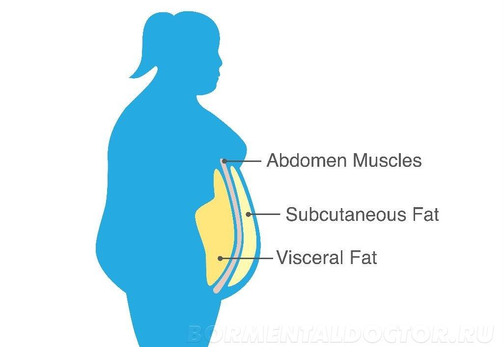 shutterstock 1145054390 1024x707 - Абдоминальное ожирение