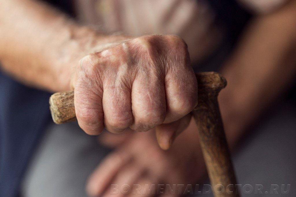 shutterstock 548294647 1024x682 - Питание для пожилых