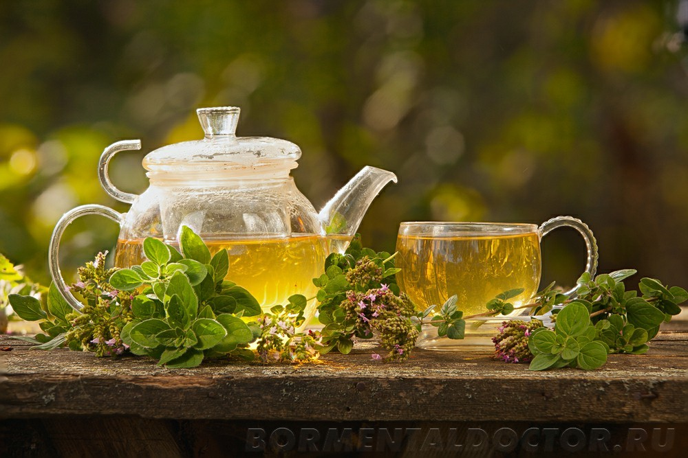 shutterstock 591159044 - Способствует ли зеленый чай похудению