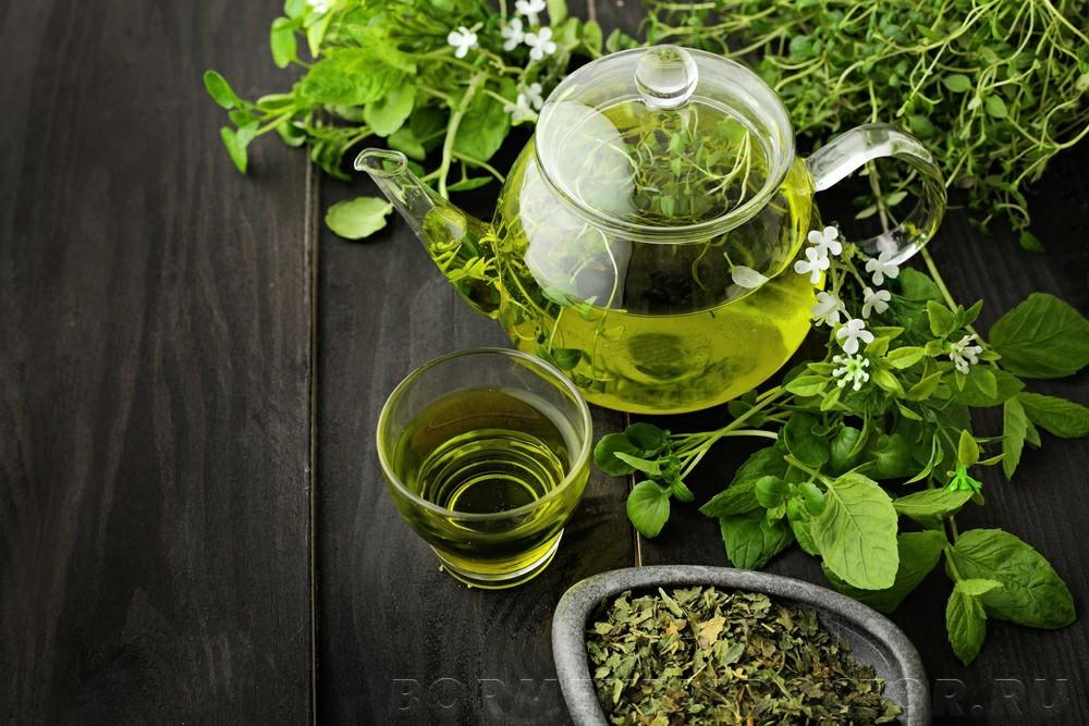 shutterstock 640184602 - Способствует ли зеленый чай похудению
