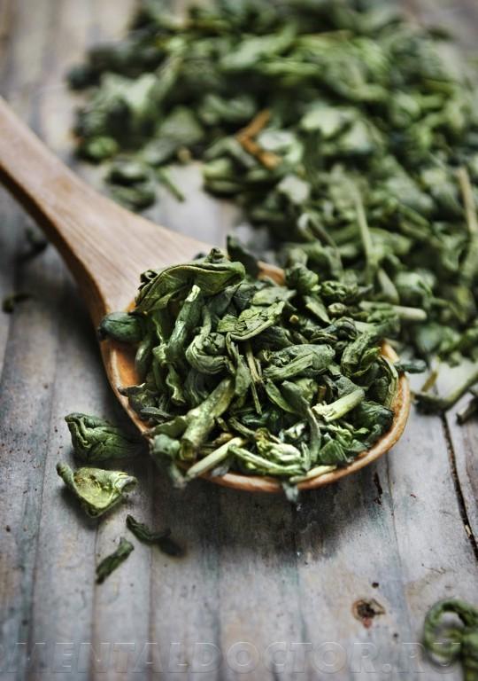 shutterstock 95891761 - Способствует ли зеленый чай похудению