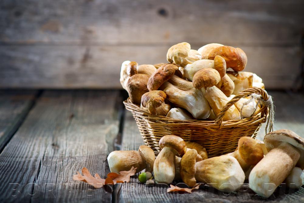 721266823 - Можно ли есть грибы при похудении