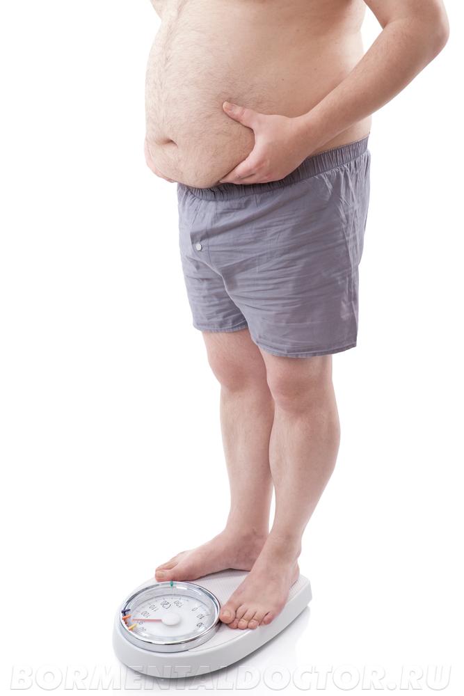 8208861 - Факторы риска ожирения