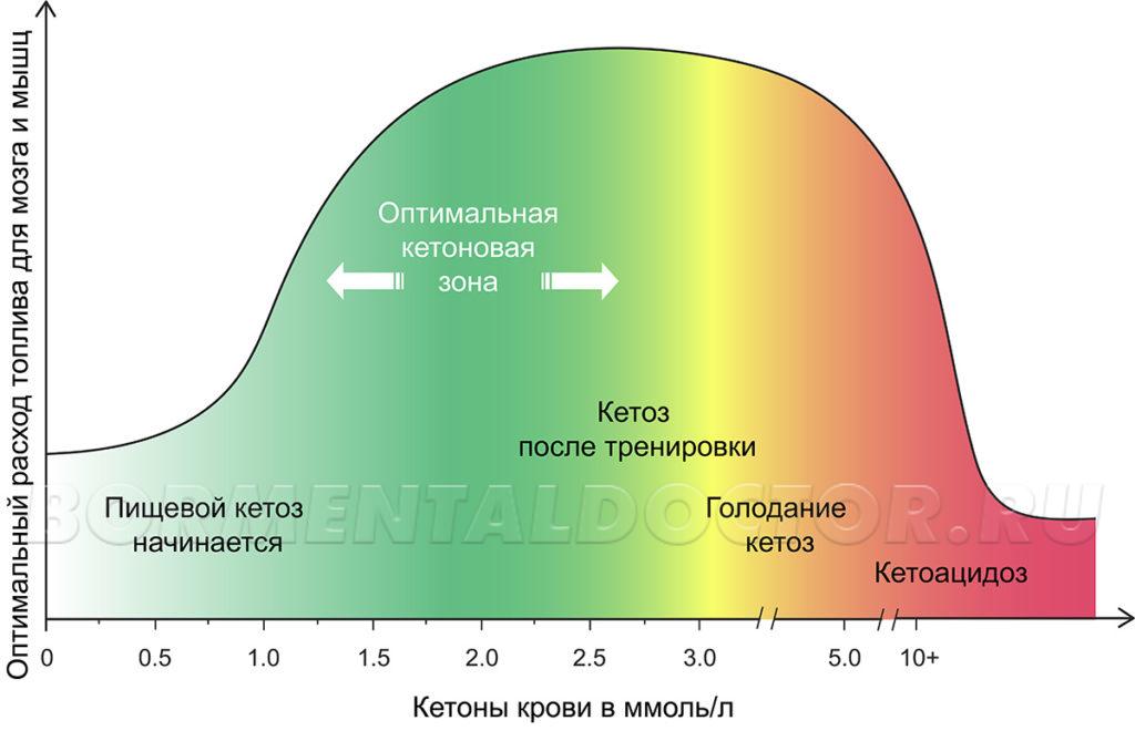 ketoni v krovi 1024x660 - Что такое кетоз и как в него войти