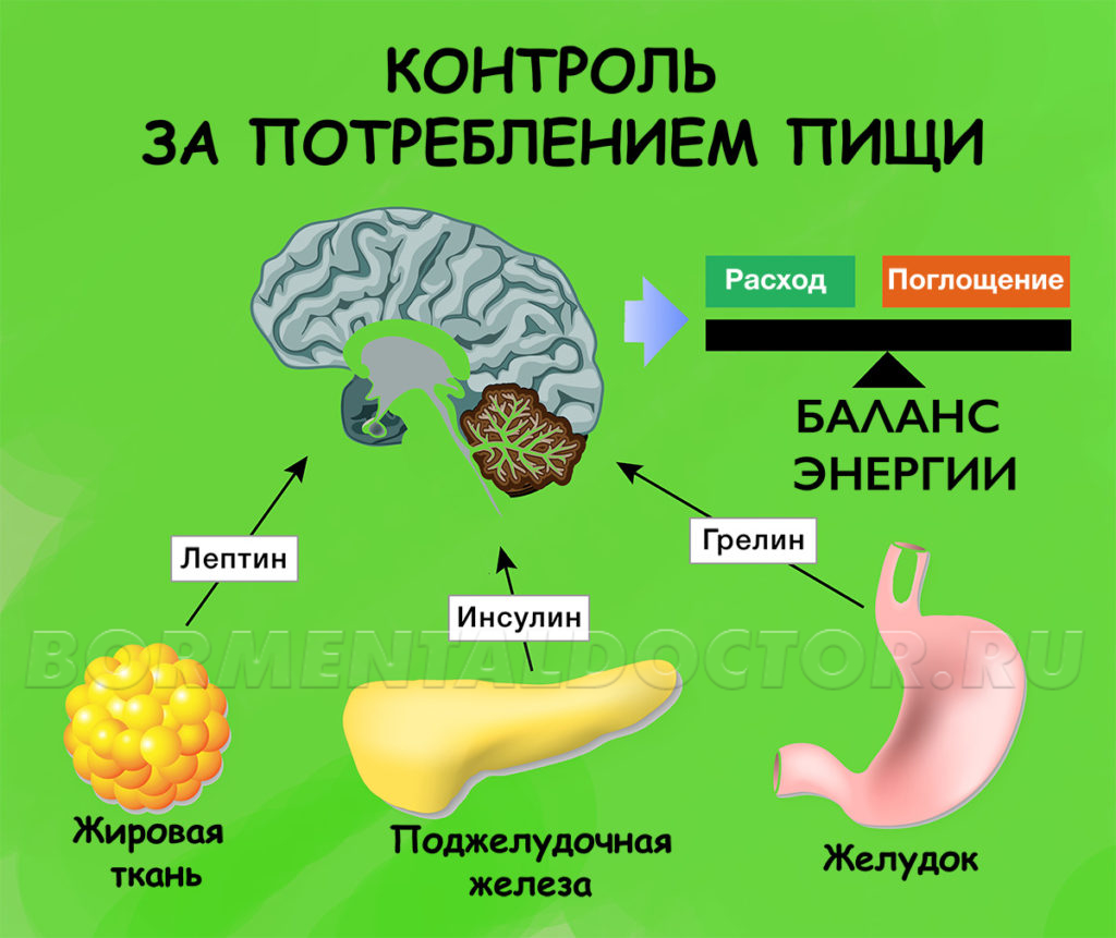 Контроль за потреблением пищи